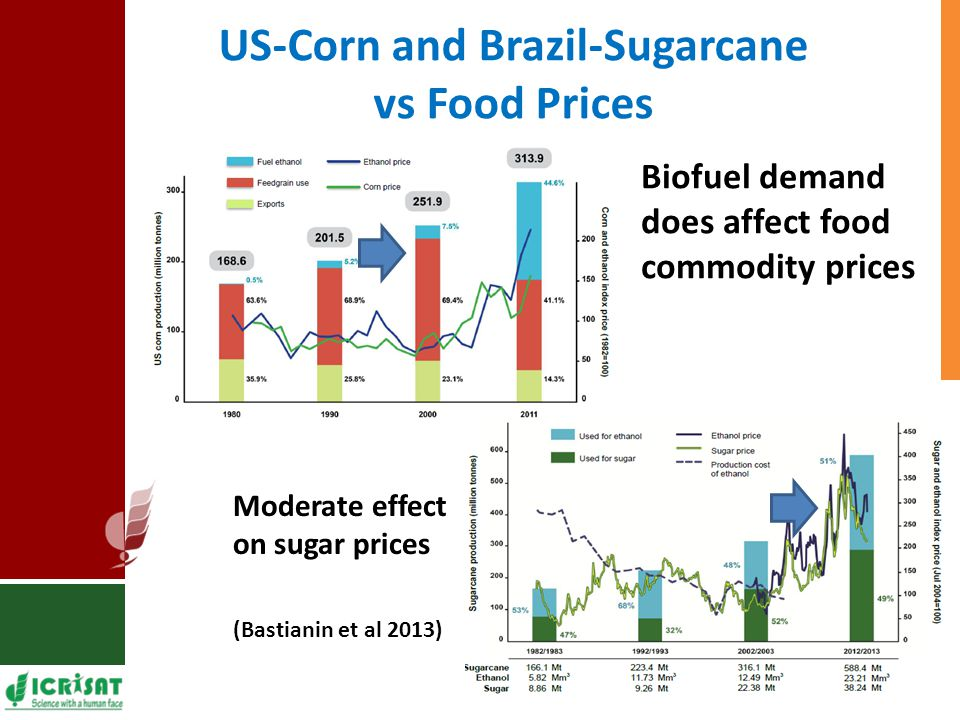 US-Corn and Brazil-Sugarcane vs Food Prices Biofuel demand does affect food commodity prices Moderate effect on sugar prices (Bastianin et al 2013)