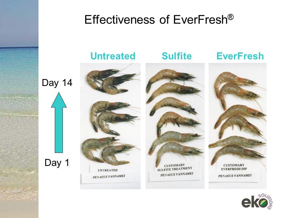 Effectiveness of EverFresh ® UntreatedSulfiteEverFresh Day 14 Day 1