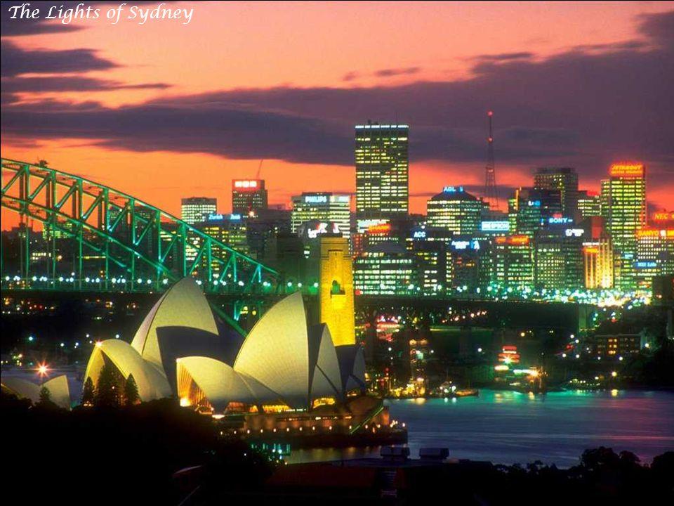 Sydney Harbor at Dusk