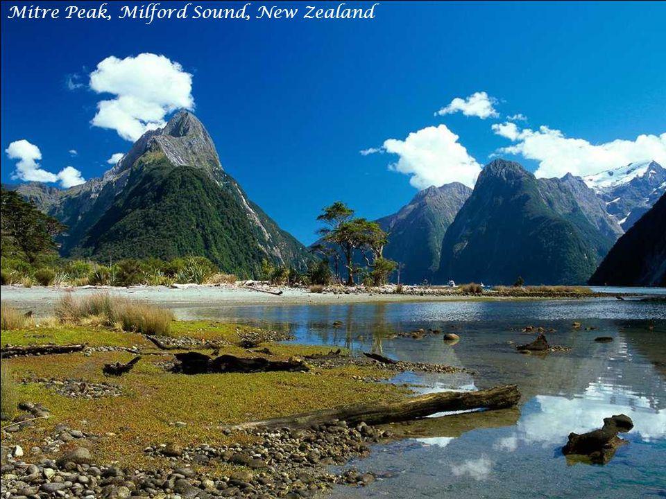 Misty Waters, New Zealand