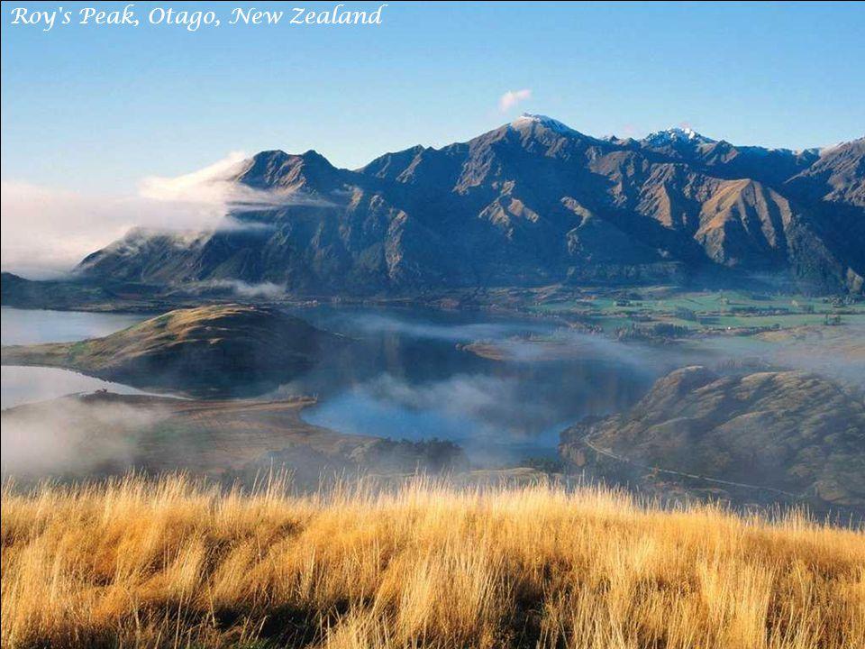 Te Whaiti-Nui-A-Toi Canyon, Whirinaki Forest New Zealand