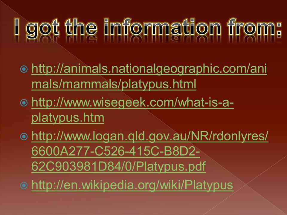  http://animals.nationalgeographic.com/ani mals/mammals/platypus.html http://animals.nationalgeographic.com/ani mals/mammals/platypus.html  http://w