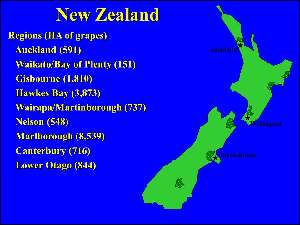 Regions (HA of grapes) Auckland (591) Auckland (591) Waikato/Bay of Plenty (151) Waikato/Bay of Plenty (151) Gisbourne (1,810) Gisbourne (1,810) Hawkes Bay (3,873) Hawkes Bay (3,873) Wairapa/Martinborough (737) Wairapa/Martinborough (737) Nelson (548) Nelson (548) Marlborough (8,539) Marlborough (8,539) Canterbury (716) Canterbury (716) Lower Otago (844) Lower Otago (844) Auckland Wellington Christchurch New Zealand