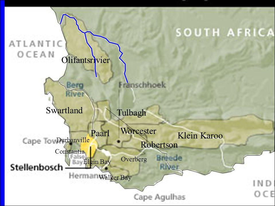 Tulbagh Paarl Durbanville Constantia Olifantsrivier Worcester Robertson Klein Karoo Overberg Elgin Bay Walker Bay Swartland