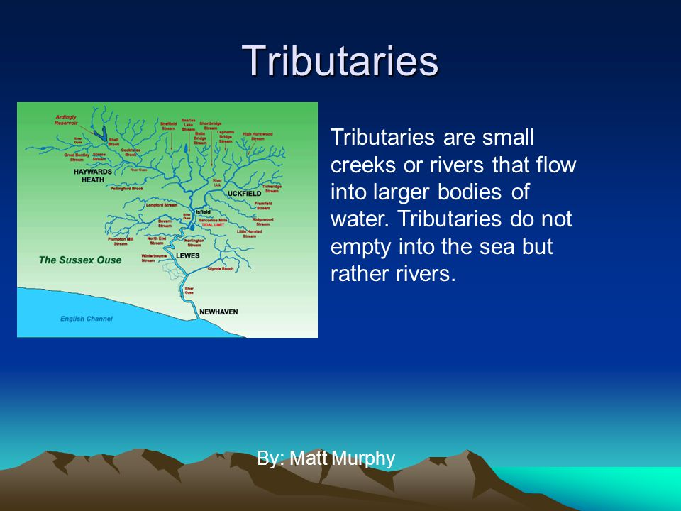 Tributaries By: Matt Murphy Tributaries are small creeks or rivers that flow into larger bodies of water. Tributaries do not empty into the sea but ra