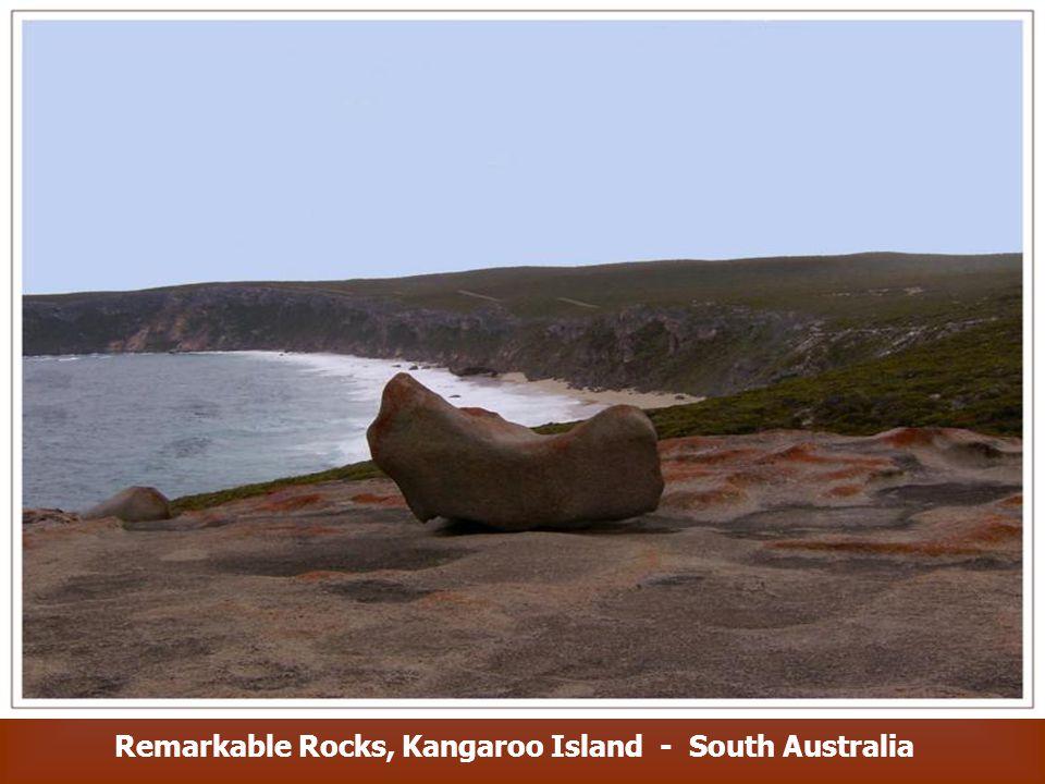 The Remarkable Rocks, Kangaroo Island - South Australia