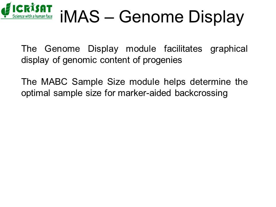 The Genome Display module facilitates graphical display of genomic content of progenies The MABC Sample Size module helps determine the optimal sample size for marker-aided backcrossing iMAS – Genome Display