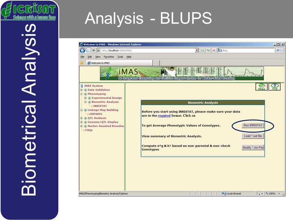 Analysis - BLUPS Biometrical Analysis