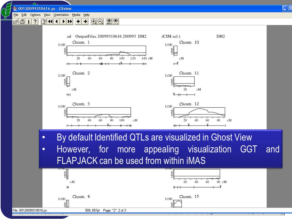 QTL Mapping PLABQTL By default Identified QTLs are visualized in Ghost View However, for more appealing visualization GGT and FLAPJACK can be used from within iMAS By default Identified QTLs are visualized in Ghost View However, for more appealing visualization GGT and FLAPJACK can be used from within iMAS