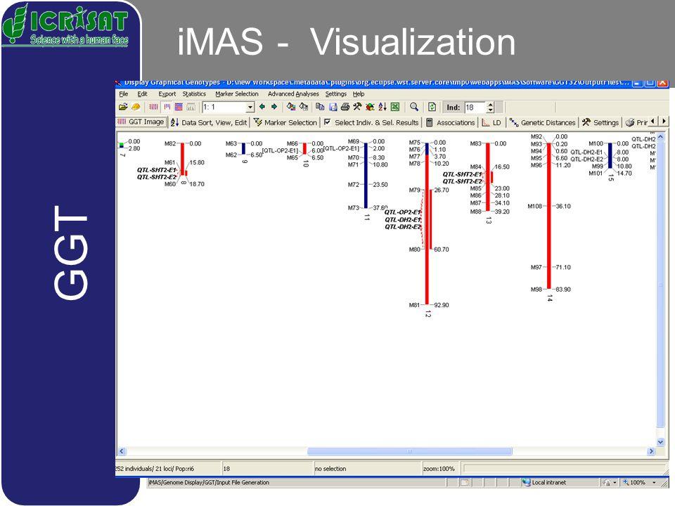 iMAS - Visualization GGT