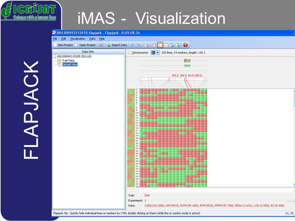 iMAS - Visualization FLAPJACK