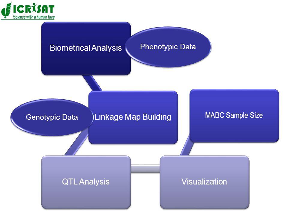 Biometrical AnalysisLinkage Map BuildingQTL AnalysisVisualization MABC Sample Size Phenotypic Data Genotypic Data