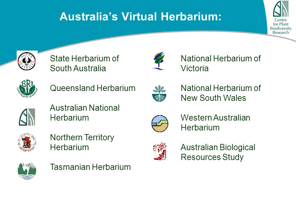 Australia's Virtual Herbarium: State Herbarium of South Australia Queensland Herbarium Australian National Herbarium Northern Territory Herbarium Tasmanian Herbarium National Herbarium of Victoria National Herbarium of New South Wales Western Australian Herbarium Australian Biological Resources Study