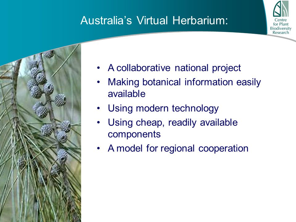 A u s t r a l i a ' s G r o w i n g F u t u r e Australia's Virtual Herbarium: A collaborative national project Making botanical information easily available Using modern technology Using cheap, readily available components A model for regional cooperation