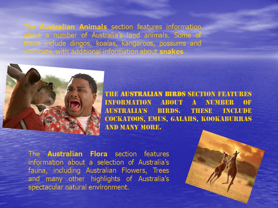 The Australian Animals section features information about a number of Australia s land animals.