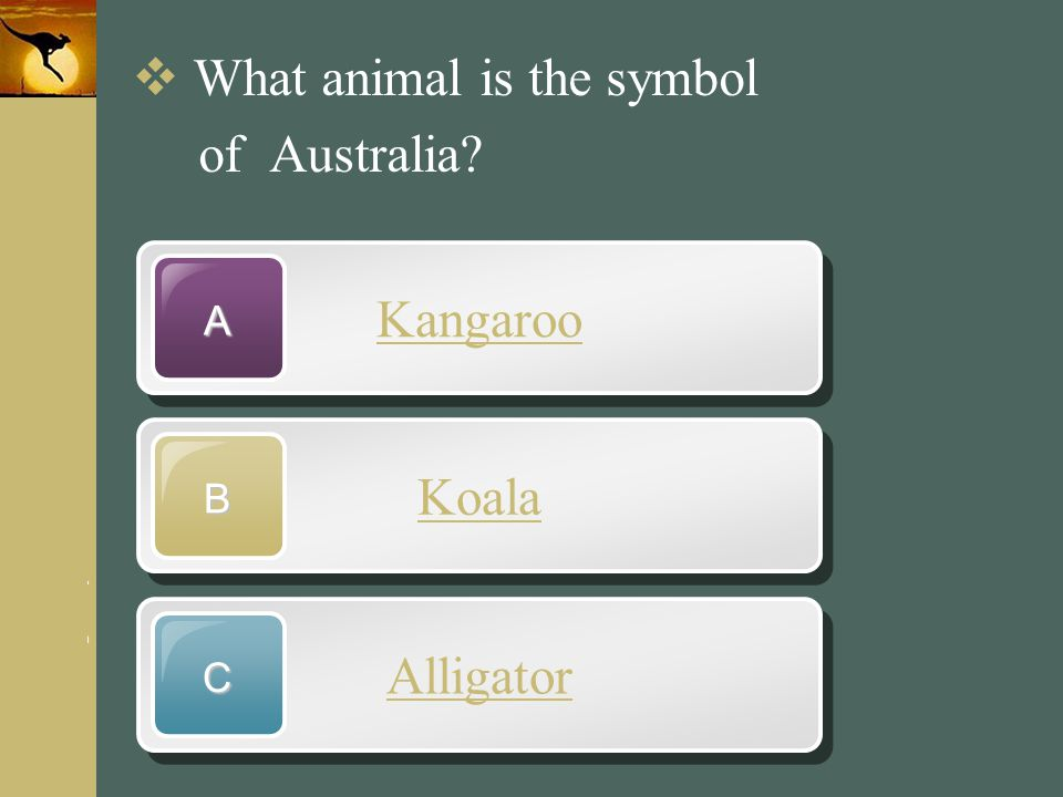 www.themegallery.com Company Logo Kangaroo A Koala B Alligator C  What animal is the symbol of Australia?