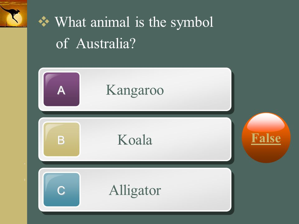 www.themegallery.com Company Logo Kangaroo A Koala B Alligator C  What animal is the symbol of Australia? False