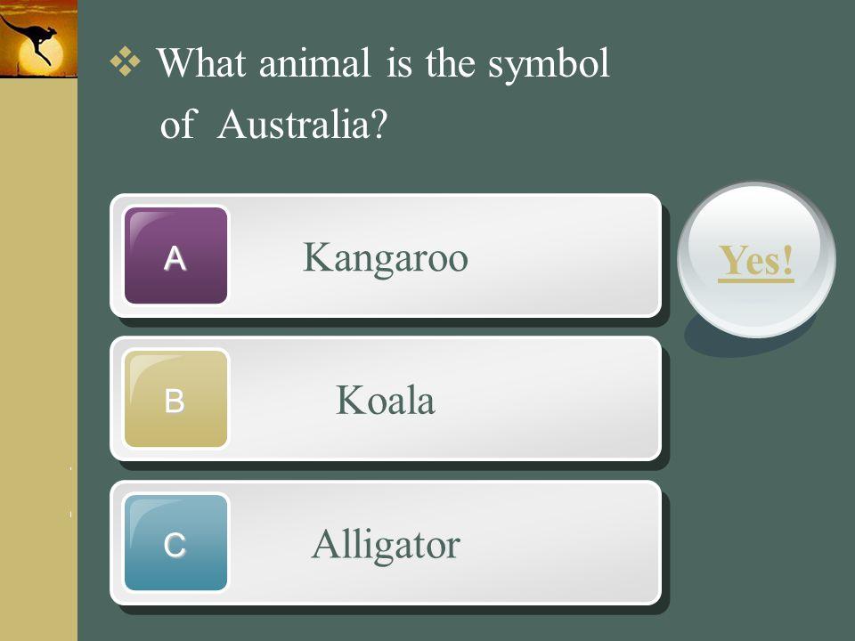 www.themegallery.com Company Logo Kangaroo A Koala B Alligator C  What animal is the symbol of Australia? Yes!
