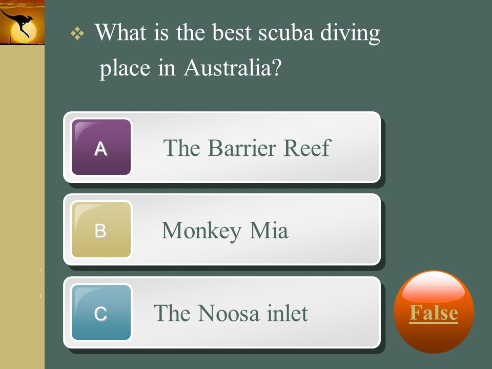 www.themegallery.com Company Logo The Barrier Reef A Monkey Mia B The Noosa inlet C  What is the best scuba diving place in Australia? False