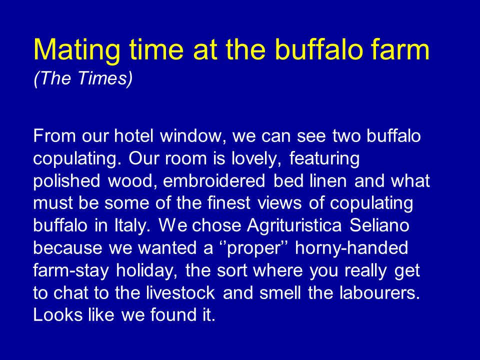 Mating time at the buffalo farm (The Times) From our hotel window, we can see two buffalo copulating.