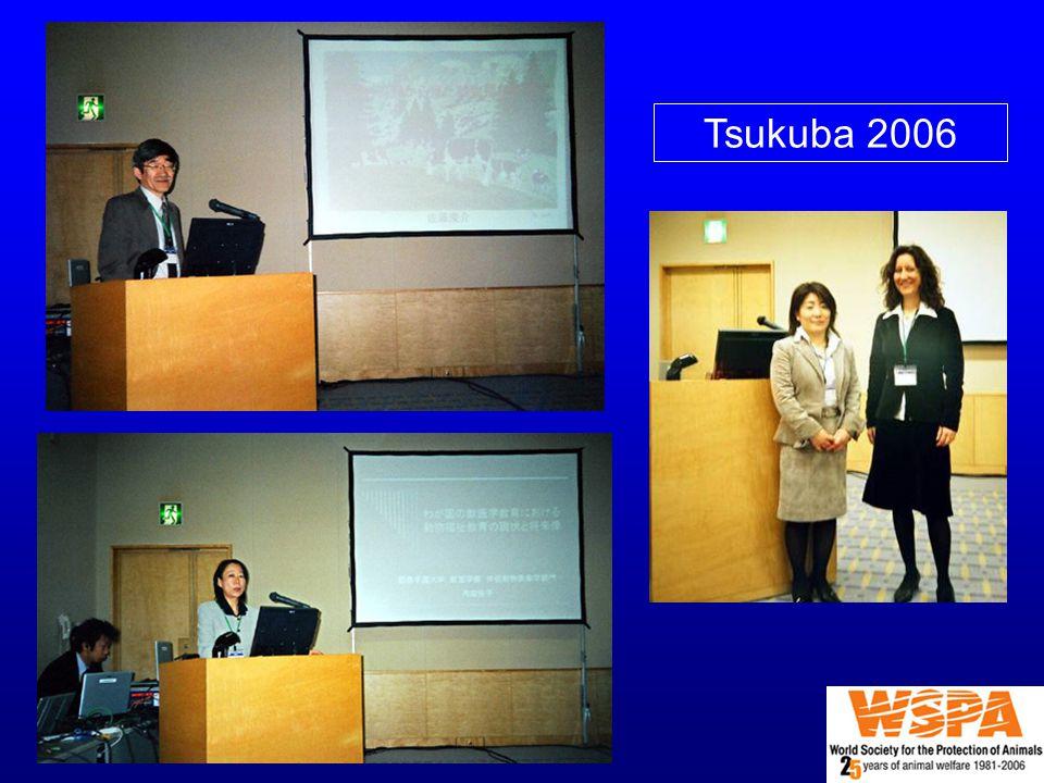 Tsukuba 2006