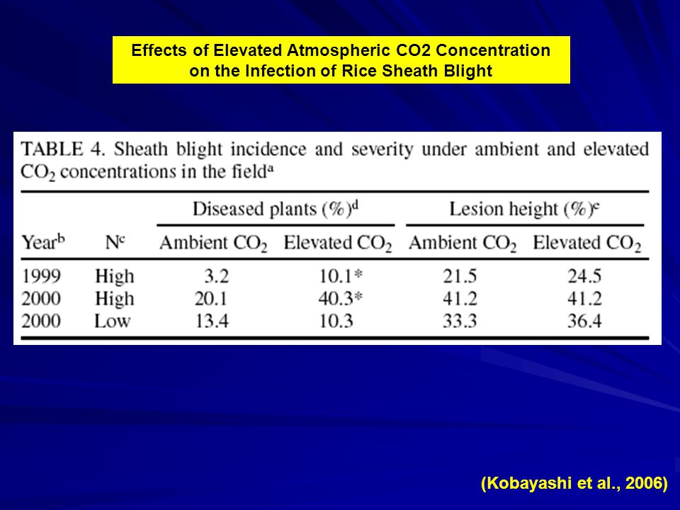 Effects of Elevated Atmospheric CO2 Concentration on the Infection of Rice Sheath Blight (Kobayashi et al., 2006)
