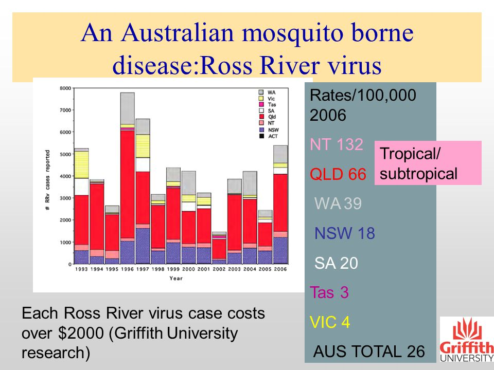 Australian government view 2006 Mosquito-borne disease At the local level …..