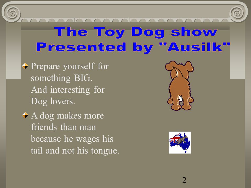 www.silkyterrier-toydog-webclub.com Toy Dog Club of QLD Australia. 1