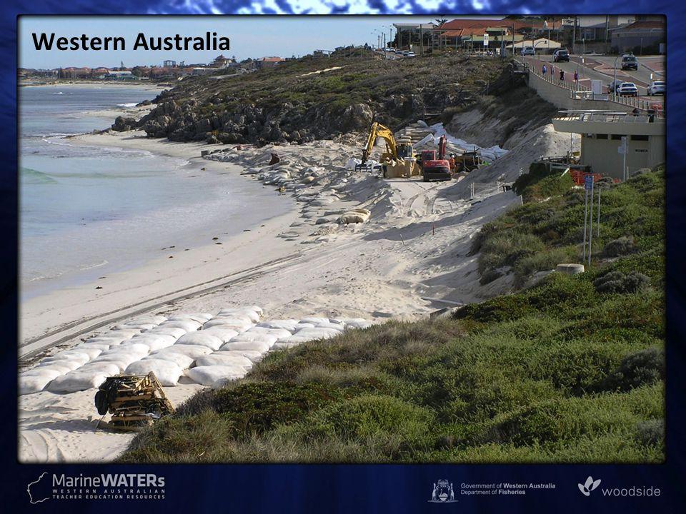Warilla, NSW (south of Wollongong) Source: http://www.coastalwatch.com/uploadedmedia/articles/NSWWarrilla_200811611473.jpg [17 Jan 2012]http://www.coastalwatch.com/uploadedmedia/articles/NSWWarrilla_200811611473.jpg