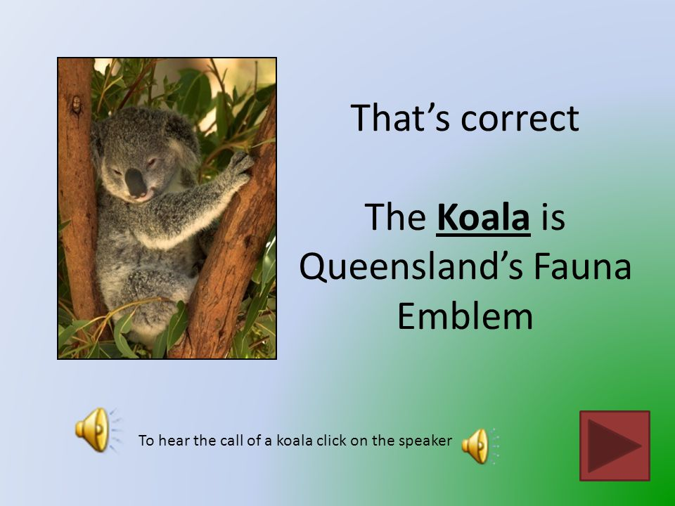 That is not Queensland's fauna emblem Click on the button to go back and try again