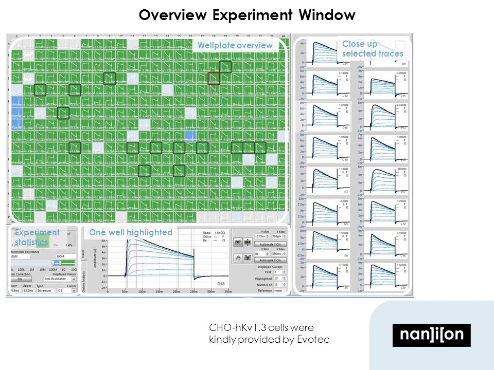Overview Experiment Window CHO-hKv1.3 cells were kindly provided by Evotec Wellplate overview Close up selected traces Experiment statistics One well highlighted