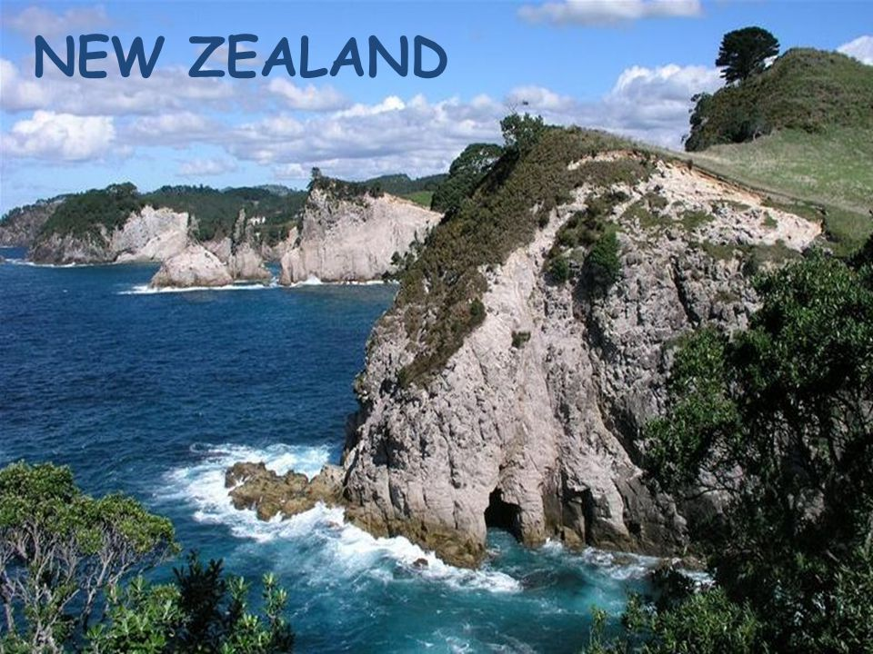 New Zealand Fact file Official symbols Geographical position History timeline Political structure Sights and cities Famous people Natural world Entertainment Links