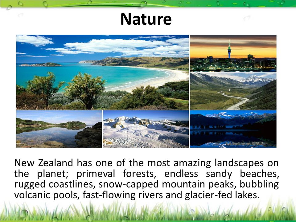 Nature New Zealand has one of the most amazing landscapes on the planet; primeval forests, endless sandy beaches, rugged coastlines, snow-capped mount