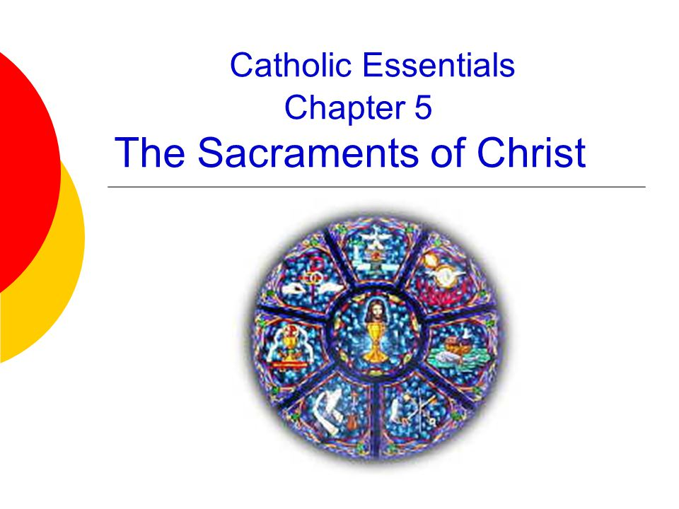 Catholic Essentials Chapter 5 The Sacraments of Christ