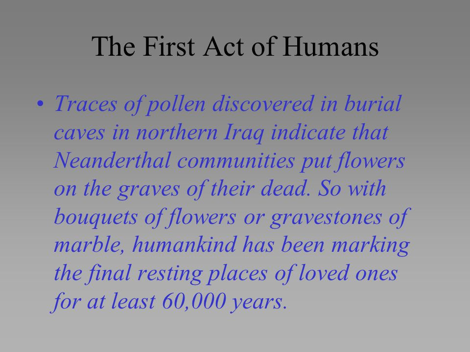 The First Act of Humans Traces of pollen discovered in burial caves in northern Iraq indicate that Neanderthal communities put flowers on the graves o
