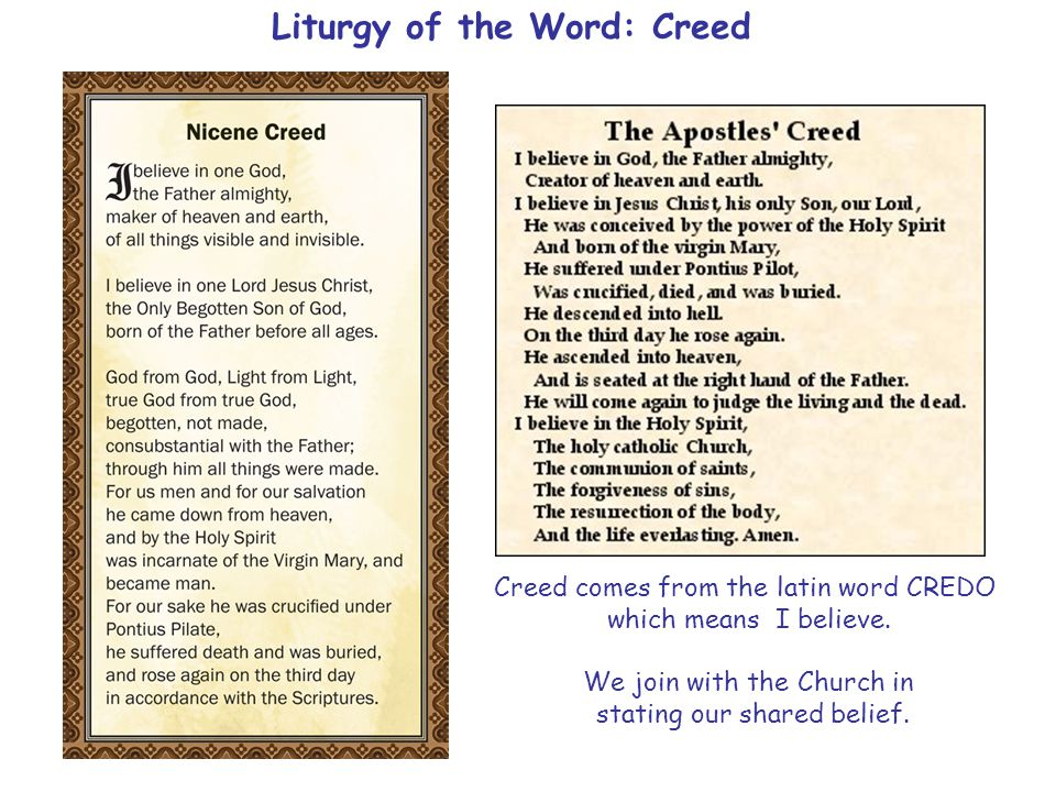 Liturgy of the Word: Creed Creed comes from the latin word CREDO which means I believe.