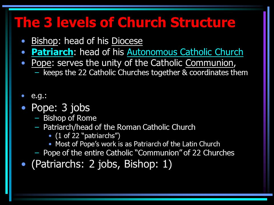 The 3 levels of Church Structure Bishop: head of his Diocese Patriarch: head of his Autonomous Catholic Church Pope: serves the unity of the Catholic