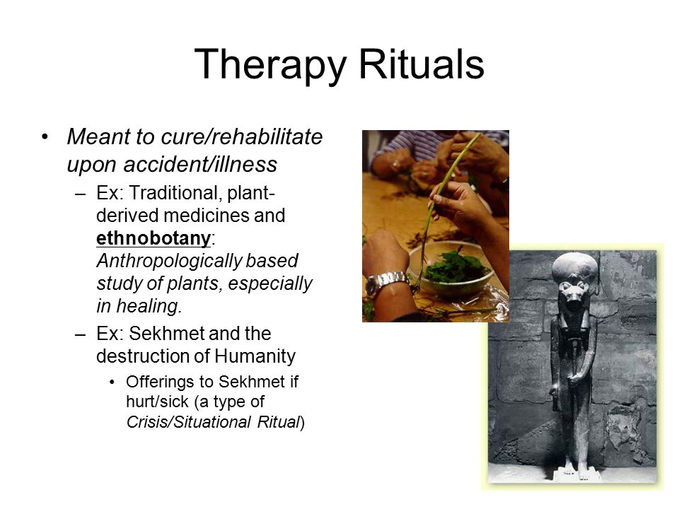 Therapy Rituals Meant to cure/rehabilitate upon accident/illness –Ex: Traditional, plant- derived medicines and ethnobotany: Anthropologically based study of plants, especially in healing.