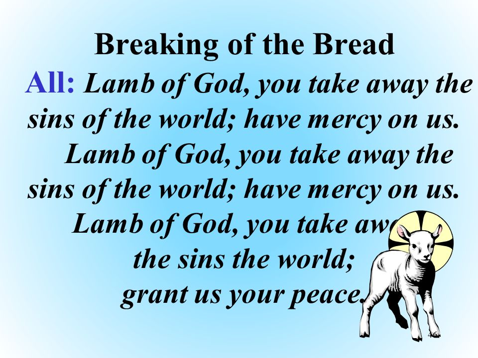 Breaking of the Bread All: Lamb of God, you take away the sins of the world; have mercy on us. Lamb of God, you take away the sins of the world; have