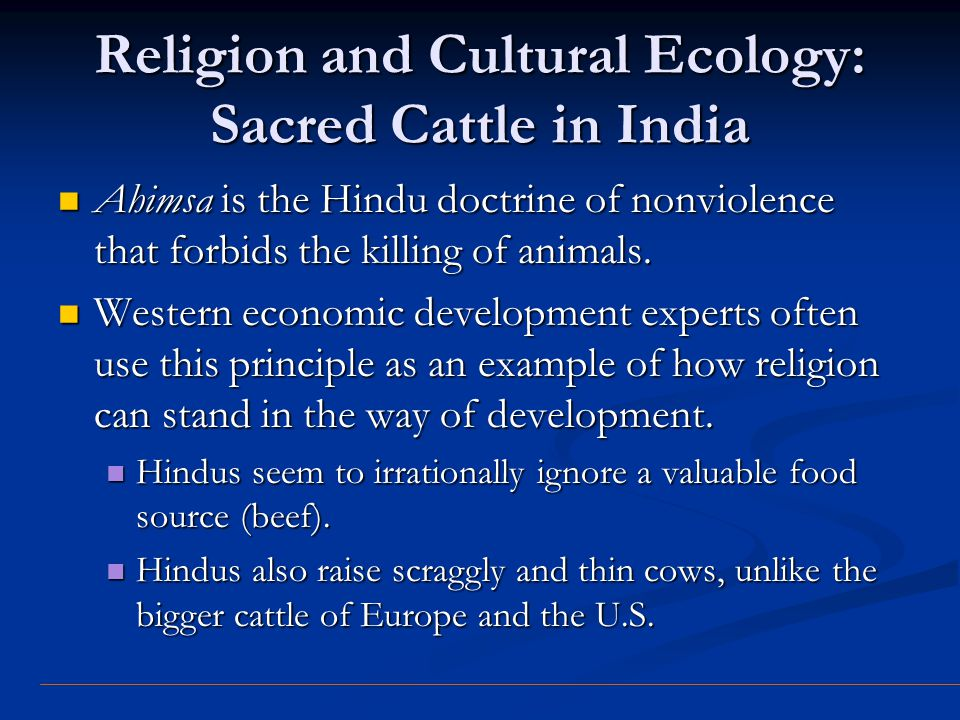Religion and Cultural Ecology: Sacred Cattle in India Ahimsa is the Hindu doctrine of nonviolence that forbids the killing of animals. Ahimsa is the H