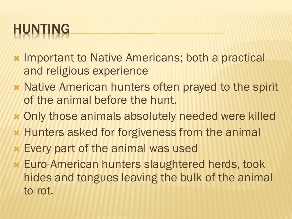  Important to Native Americans; both a practical and religious experience  Native American hunters often prayed to the spirit of the animal before t