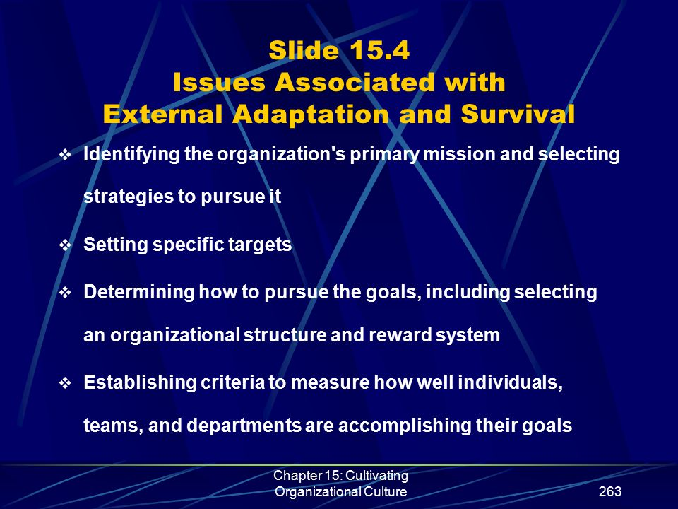 Chapter 15: Cultivating Organizational Culture263 Slide 15.4 Issues Associated with External Adaptation and Survival  Identifying the organization's