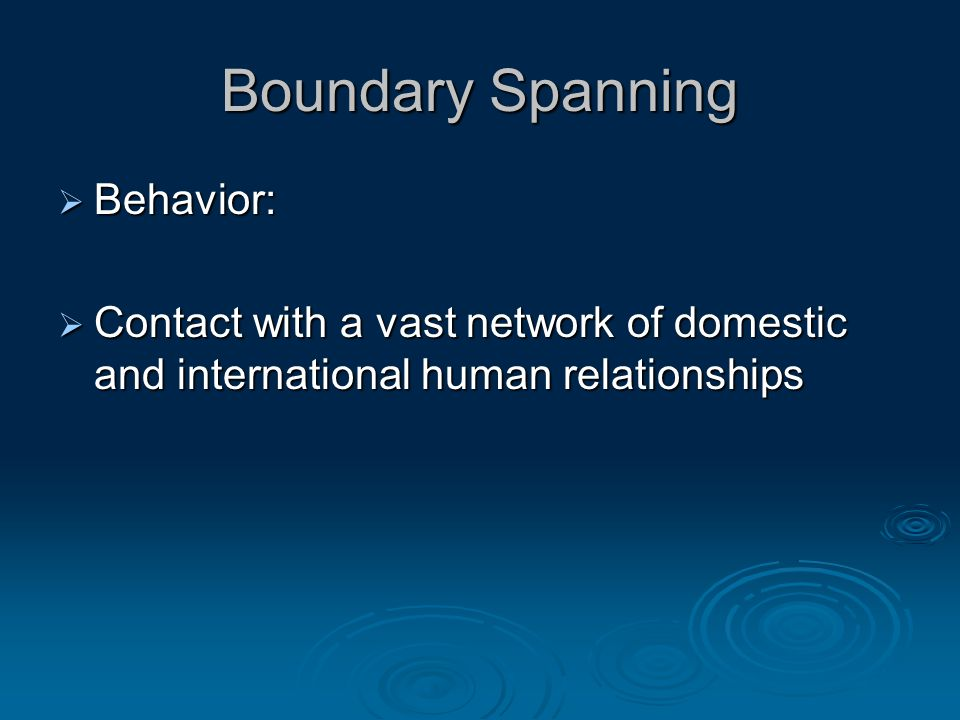 Boundary Spanning  Behavior:  Contact with a vast network of domestic and international human relationships