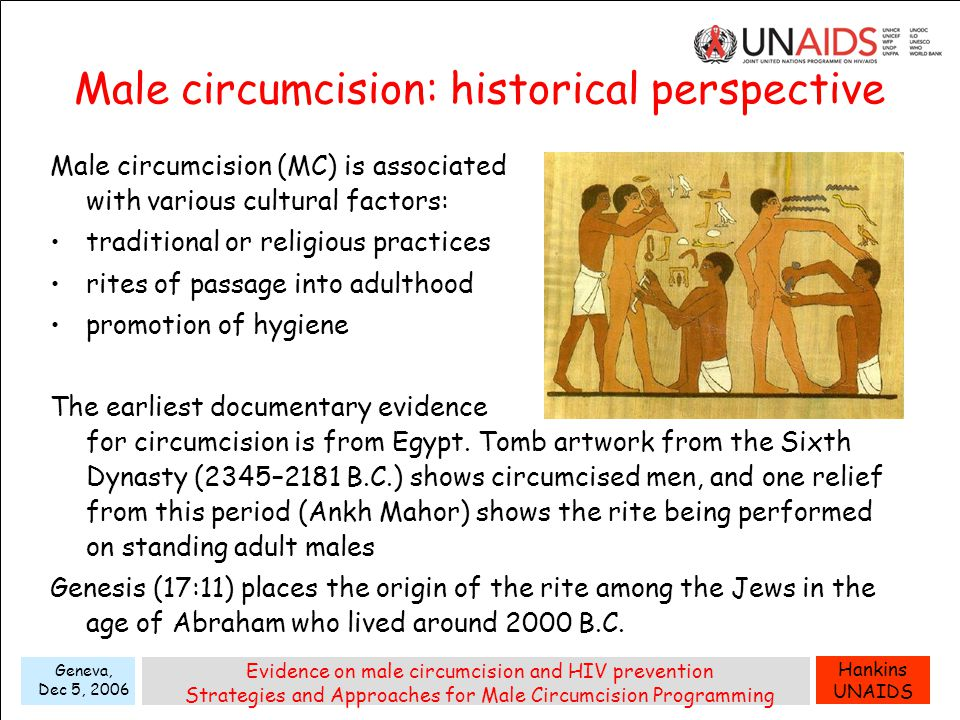Hankins UNAIDS Geneva, Dec 5, 2006 Evidence on male circumcision and HIV prevention Strategies and Approaches for Male Circumcision Programming Male circumcision: historical perspective Male circumcision (MC) is associated with various cultural factors: traditional or religious practices rites of passage into adulthood promotion of hygiene The earliest documentary evidence for circumcision is from Egypt.