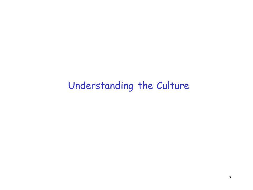 3 Understanding the Culture