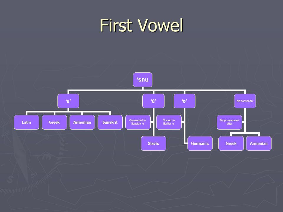 First Vowel *snu 'u' LatinGreekArmenianSanskrit 'ǔ' Slavic Connected to Sanskrit 'u' 'o' Germanic Traced to Earlier 'u' No consonant GreekArmenian Dro