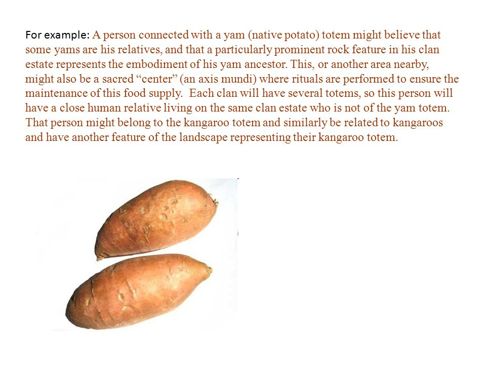 For example: A person connected with a yam (native potato) totem might believe that some yams are his relatives, and that a particularly prominent rock feature in his clan estate represents the embodiment of his yam ancestor.