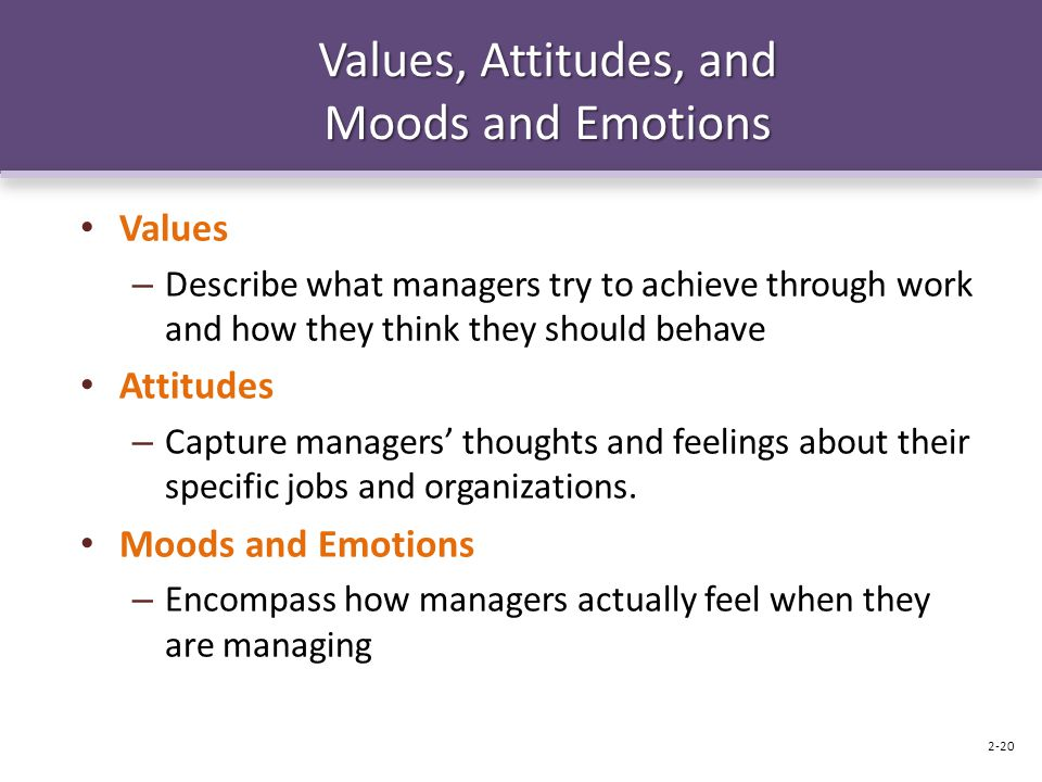 Values, Attitudes, and Moods and Emotions Values – Describe what managers try to achieve through work and how they think they should behave Attitudes – Capture managers' thoughts and feelings about their specific jobs and organizations.
