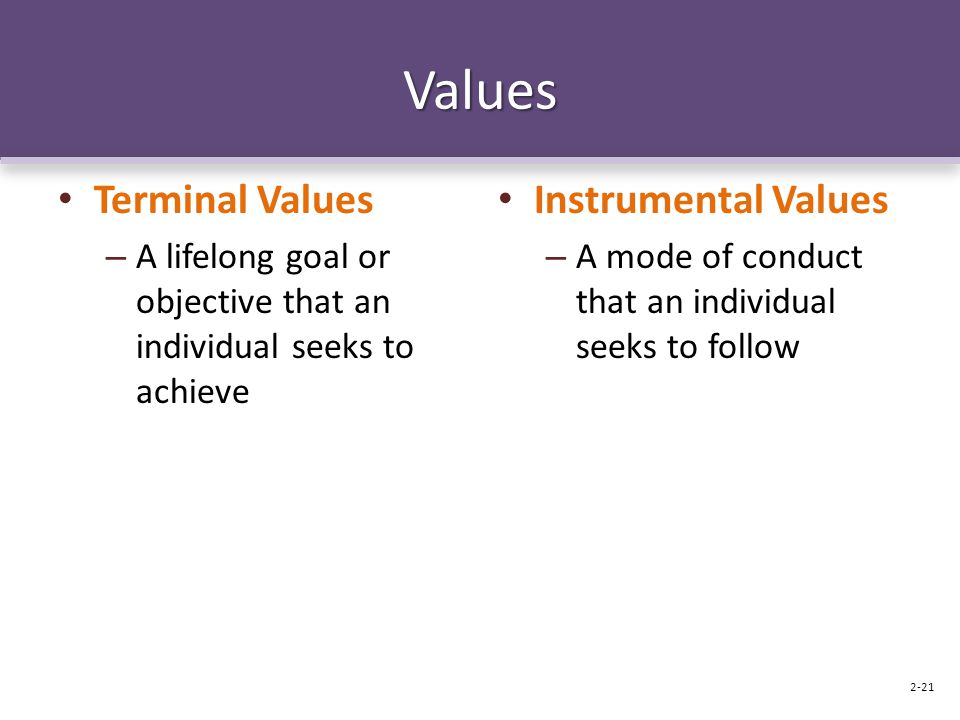 Values Terminal Values – A lifelong goal or objective that an individual seeks to achieve Instrumental Values – A mode of conduct that an individual seeks to follow 2-21
