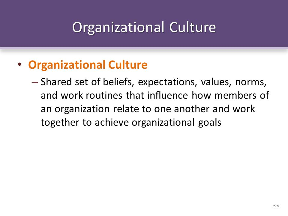Organizational Culture – Shared set of beliefs, expectations, values, norms, and work routines that influence how members of an organization relate to one another and work together to achieve organizational goals 2-30